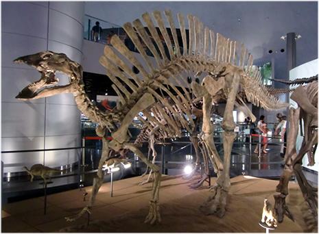 ウーラノサウルス、アフリカにすんでいた帆のあるイグアノドン類