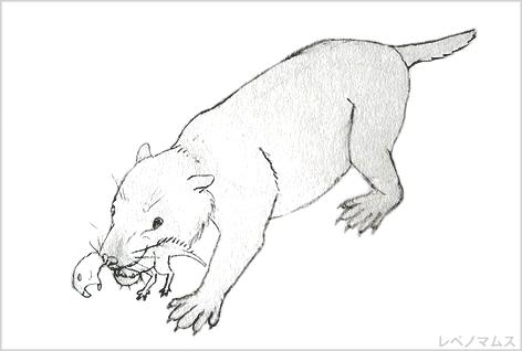 レペノマムス、恐竜プシッタコサ...