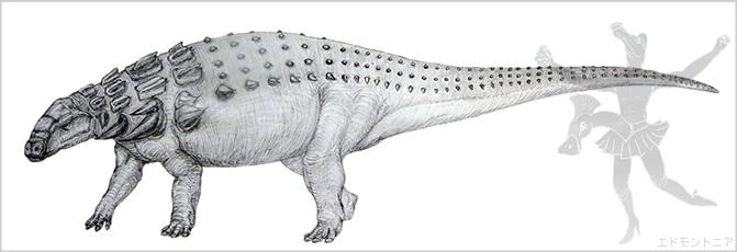 エドモントニア、尻尾棍棒を持たない鎧竜類ノドサウルスの仲間