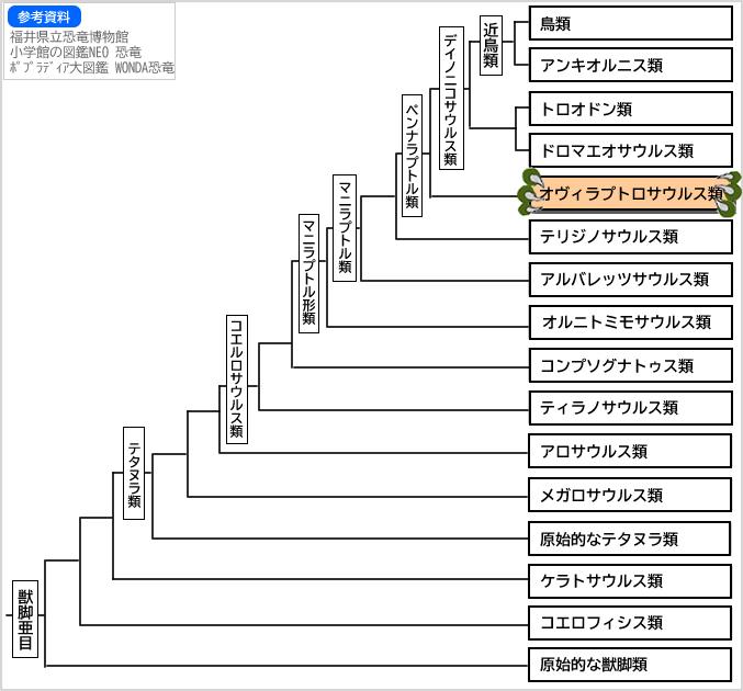 系統図獣脚類12